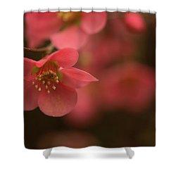 Infinite Pink Shower Curtain