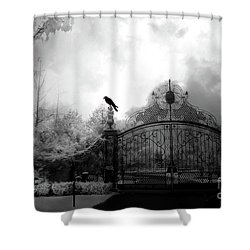 Shower Curtain featuring the photograph Infrared Gothic Raven On Gate Black And White Infrared Print - Solitude - Gothic Raven Infrared Art  by Kathy Fornal