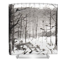 Ink Landscape 1 Shower Curtain