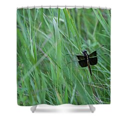 Inl-15 Shower Curtain