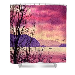 Shower Curtain featuring the painting Inland Sea Islands by James Williamson