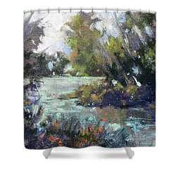 Inlet Haven Shower Curtain by Rae Andrews