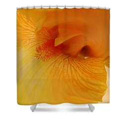 Shower Curtain featuring the digital art Inner Iris, Yellow, Close-up by Jana Russon