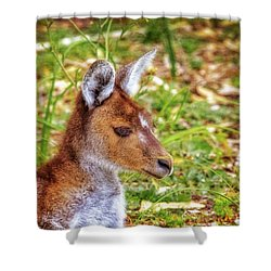 Inner Peace, Yanchep National Park Shower Curtain