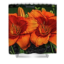 Shower Curtain featuring the photograph Innocent Fire by Judy Vincent