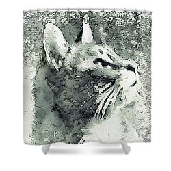 Inquisitive Cat Gray Scale Shower Curtain