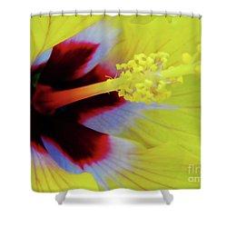Inside A Yellow Beauty Shower Curtain