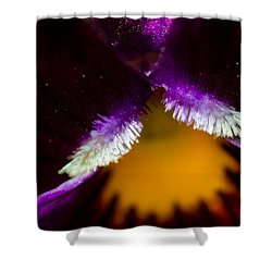 Inside The Flower 3 Shower Curtain