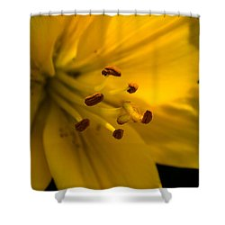 Inside The Lily Shower Curtain
