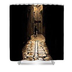 Insular Calm Shower Curtain by Andrew Paranavitana