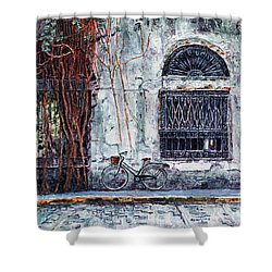 Intendencia Ruins, Intramuros, Manila Shower Curtain