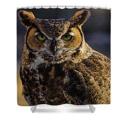 Intense Owl Shower Curtain
