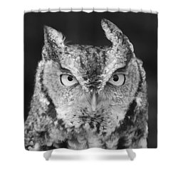 Shower Curtain featuring the photograph Intense Stare by Richard Bryce and Family