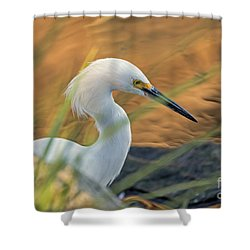 Shower Curtain featuring the photograph Intent Hunter by Kate Brown