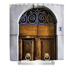 Interesting Door Shower Curtain