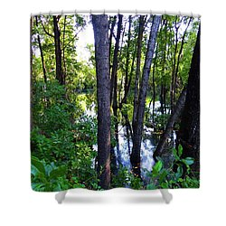 Interior Lake Chale Island Shower Curtain