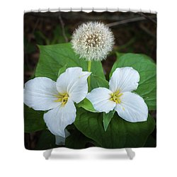 Shower Curtain featuring the photograph Interloper by Bill Pevlor