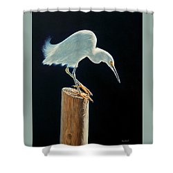 Interlude - Snowy Egret Shower Curtain