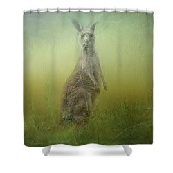 Interrupted Meal Shower Curtain by Wallaroo Images