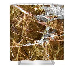 Interspace Web Shower Curtain
