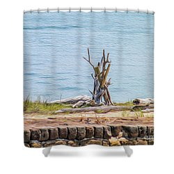 Intertwined Thoughts By The Ocean Shower Curtain