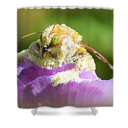 Into Something Good Shower Curtain by AJ Schibig