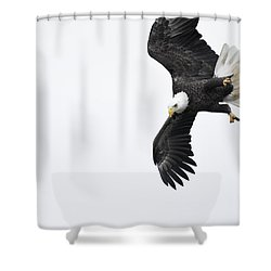 Into The Dive Shower Curtain