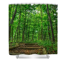 Shower Curtain featuring the photograph Into The Forest by Nikki McInnes