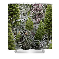 Into The Grove Shower Curtain