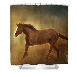 Shower Curtain featuring the photograph Into The Light Horse Digital Painterly by Clare VanderVeen