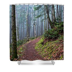 Into The Misty Forest Shower Curtain