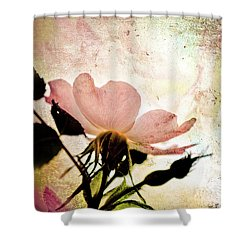 Into The Mystic Shower Curtain by Elaine Manley