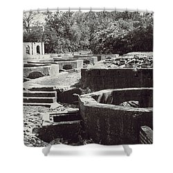 Into The Ruins 1 Shower Curtain