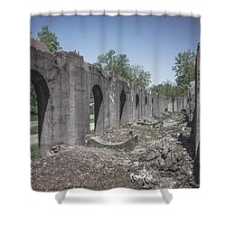 Into The Ruins 2 Shower Curtain