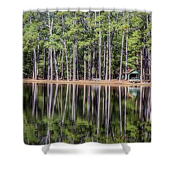 Into The Sc Woods Shower Curtain by Menachem Ganon