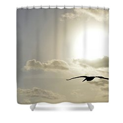 Shower Curtain featuring the photograph Into The Sun by Sebastien Coursol