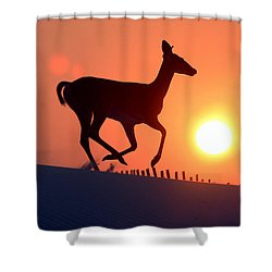 Into The Sunset Shower Curtain by Scott Mahon