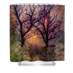 Into The Woods Shower Curtain by Annette Berglund