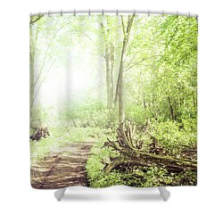 Shower Curtain featuring the photograph Into The Woods by Joel Witmeyer