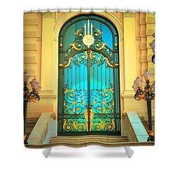 Intricacies Shower Curtain by Tara Turner