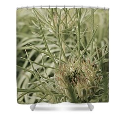 Intricate Weed Shower Curtain by Tim Good