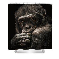 Introvert Shower Curtain by Paul Neville