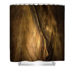 Intrusion Shower Curtain by Peter Scott