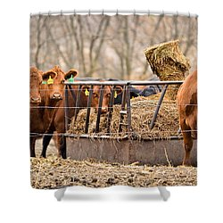Invitation Only Shower Curtain