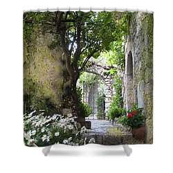 Inviting Courtyard Shower Curtain