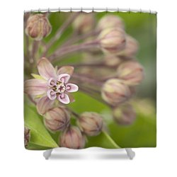 Inviting The Monarch Shower Curtain