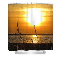 Iona Beach Park Shower Curtain