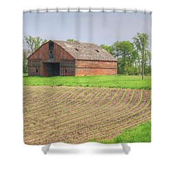 Iowa Corn Sprouts Shower Curtain