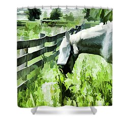 Shower Curtain featuring the digital art Iowa Farm Pasture And White Horse by Wilma Birdwell