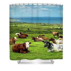 Ireland - Westcoast Shower Curtain by Juergen Klust